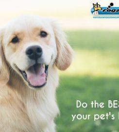 Rogz Pet Insurance