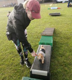 Dogz at Home Training Centre